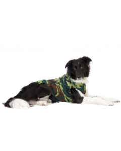 24 Camo Gold Paw Series Dog Fleece