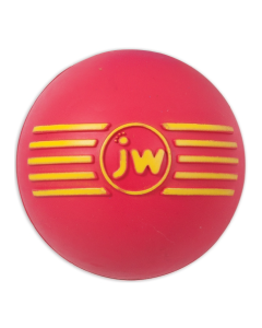 JW Pet Small Isqueak Ball Dog Toy