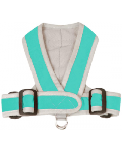My Canine Kids Small Turquoise Precision Dog Harness