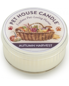 One Fur All 1.5oz. Autumn Harvest Candle
