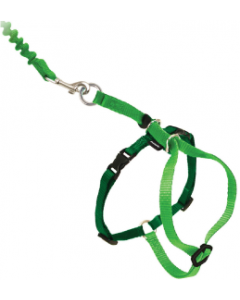 Premier Medium Come With Me Kitty Green Harness