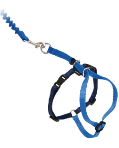 Premier Medium Come With Me Kitty Blue Harness