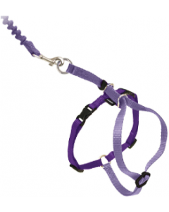 Premier Medium Come With Me Kitty Purple Harness
