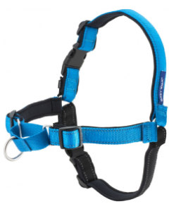 Premier Deluxe Large Blue Easy Walk Dog Harness