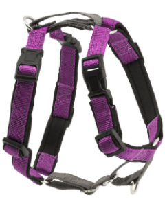 Premier Large Plum 3 In1 Dog Harness